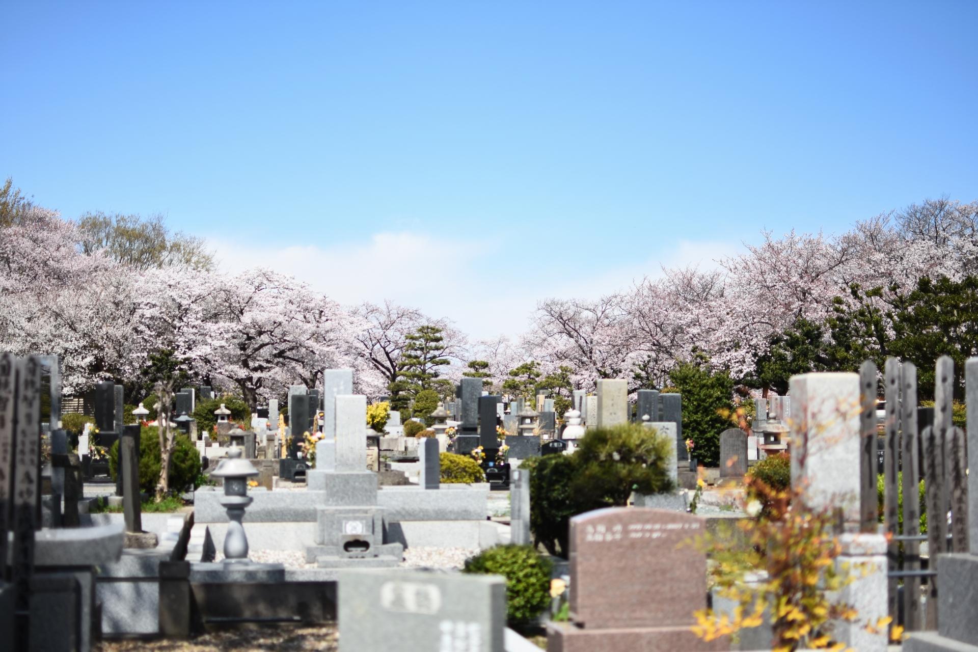 墓地・終活