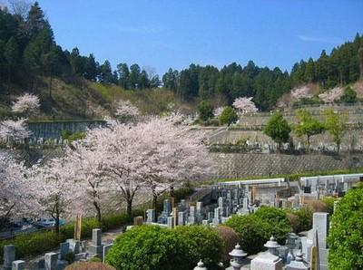 西多摩霊園・樹木葬