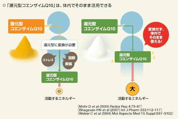コエンザイムQ10・酸化型と還元型