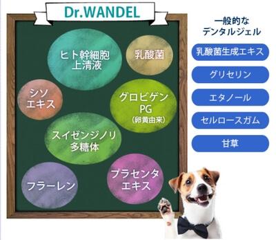 ドクターワンデル・成分