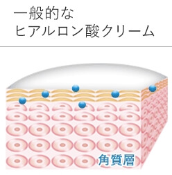 一般のヒアルロン酸クリーム