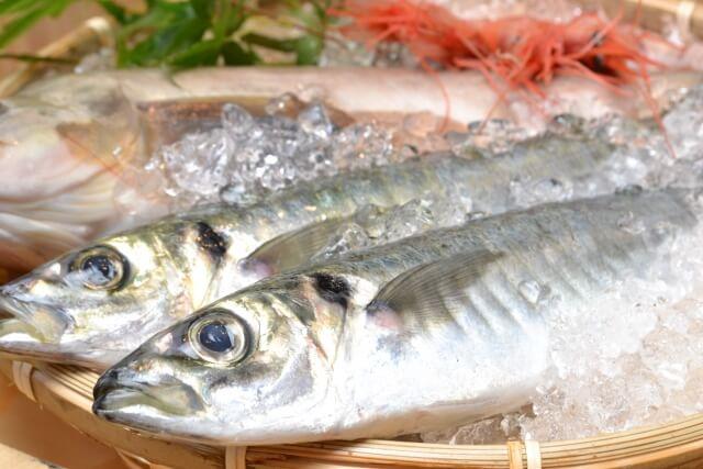青魚・DHA・EPA